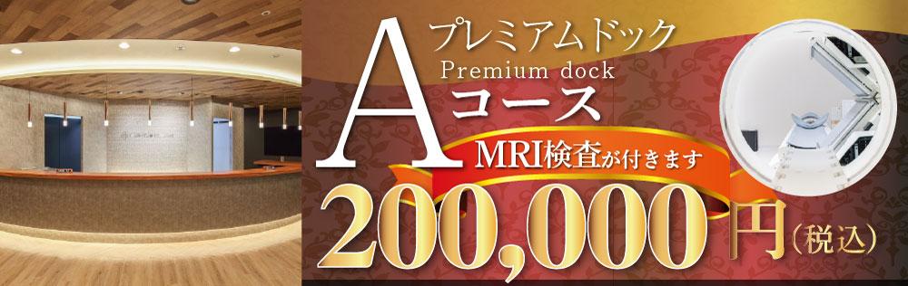 プレミアムドックAコース200,000円(税込)