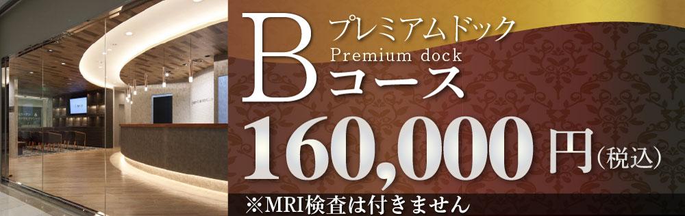 プレミアムドックBコース160,000円(税込)
